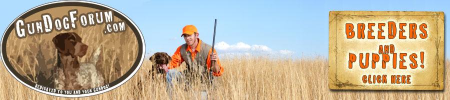 Gun Dog Forum: Training Hunting Dogs